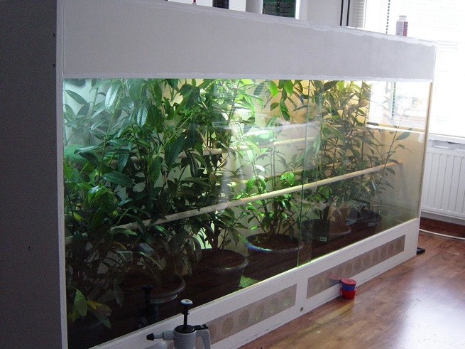 A large terrarium designed to keep larger chameleon species. Note the  ventilation ports at the bottom below the doors. Photo courtesy of Steven  Oosterhoff, ... - 10JulAndersonGlass