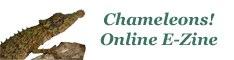 Chameleons! Online E-Zine